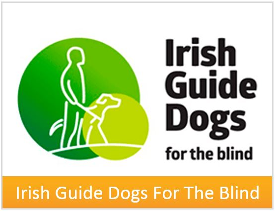box-irish-guide-dogs-for-the-blind.jpg